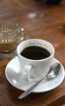 Kopi luwak (civet coffee) in Bali Indonesia