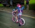 Butterfly on a Bike