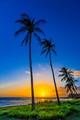 Poipu - Kauai - HI