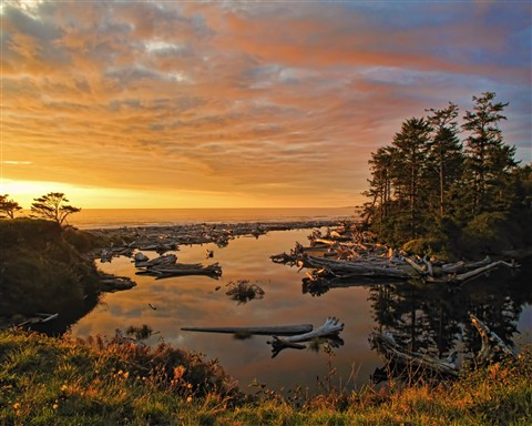 TMB2011_Kalaloch_Creek_Sunset_HD