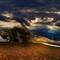 Barn 10-16-2012-2Cs