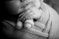 Little baby hands