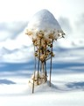 snow weeds 4