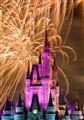 Disney Firework Celebration