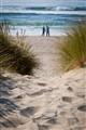 Umpqua Beach Romance