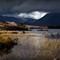 Rocks and Reeds on Rannoch Moor, Scotland