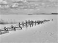 Winter on Bodden