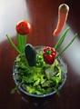 veggies vertical