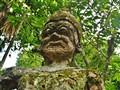 Buddha Moss