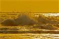 The Golden Splash