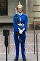 Female palace guard