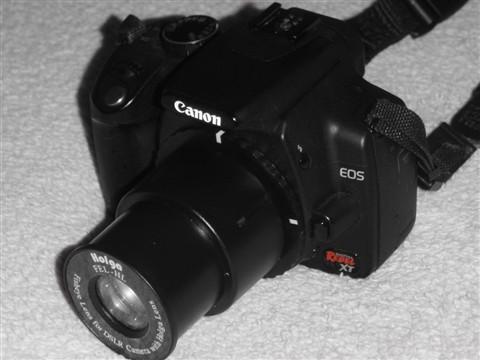XT/350D with Holga Fisheye lens