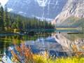 Cavell Lake
