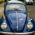 BLUE BETTLE