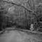 Chism Mill Road on the Fenton: Voigtländer Ultron 35mm f/1.7 (LTM)