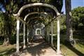 Jardim Botanico - RJ