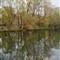 Spring in Oradea