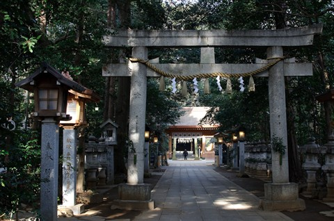 Suwa Jinja in the Morning-2