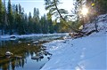 Slocan River Early Winter