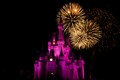 Disney_2011