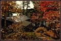 fall at the cottage