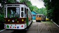Old trams in Timisoara