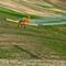 Crop Duster-854017