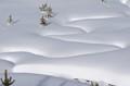 Warm Rivulet under Snow
