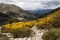 Les Pyrénées a la Pic du Canigou