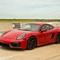 Porsche Parade_edited-1