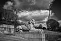 Forgotten Sphinx