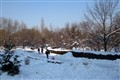 Plumbuita Park during winter