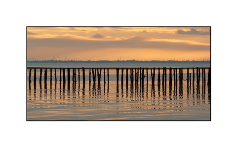 Polder Posts at Sunset