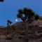 Moonrise1 JTNP