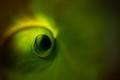 ''Mystic eye''