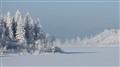A Winter Wonderland in Calgary, Alberta