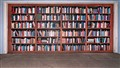 Garage Door Library Mural
