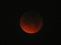 blood moon - December 10, 2011 lunar eclipse