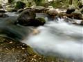 Manzanares river