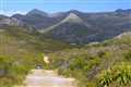 Jeep Track Silvermine Mountain