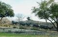 Pionneer Park, Dallas TX (e2)