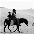 Saqqara_C8796-2