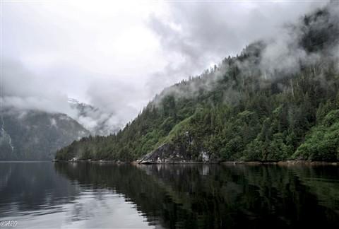 Misty Fjord 20-7080294