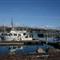 Bodega Bay Marina