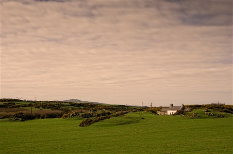 Lonely cottage near porth Wen