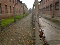 Wires of Auschwitz