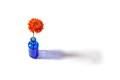 Orange gerbera in blue vase on white background
