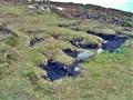 Irish Peat Bog
