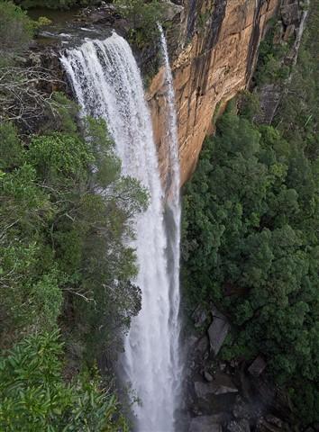 Fitzroy Falls (a), NSW