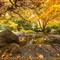 Lithia Park 2012-20